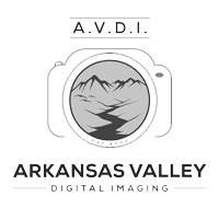 AVDI-White-BG-greyscale-small.png