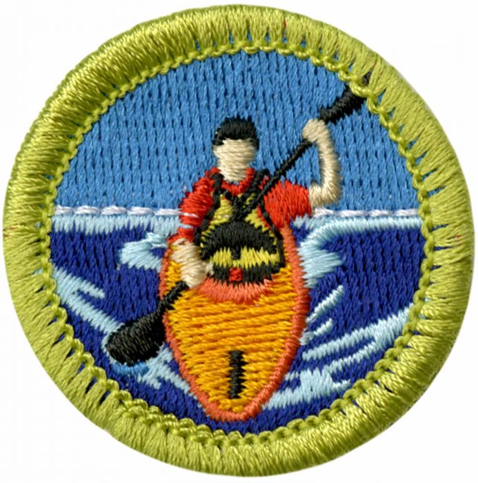 BSA merit badges 4