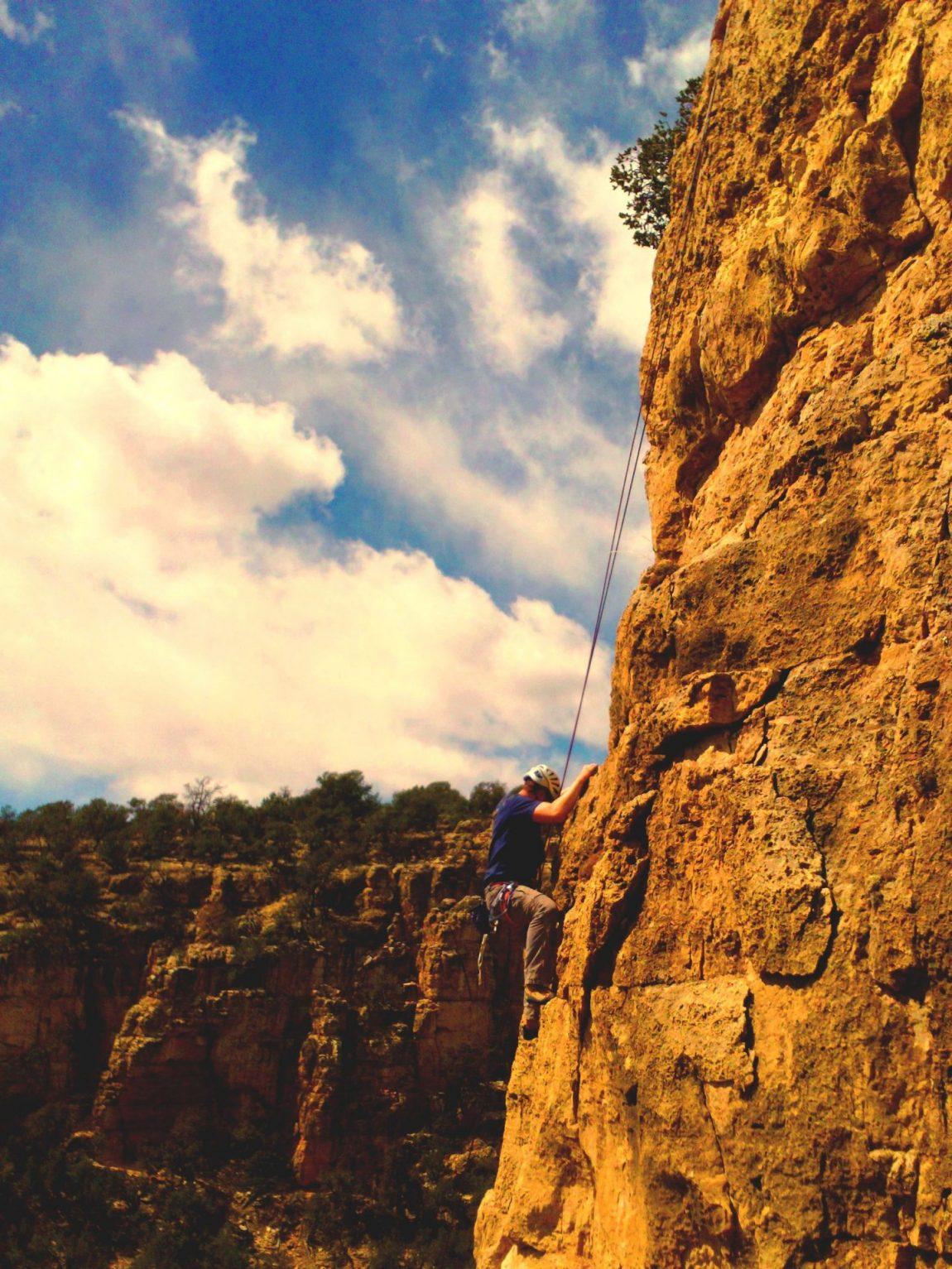 shelf.climber.2.jpg